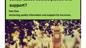 The All-Party Parliamentary Group (APPG) for Adult Survivors of Child Sexual Abuse